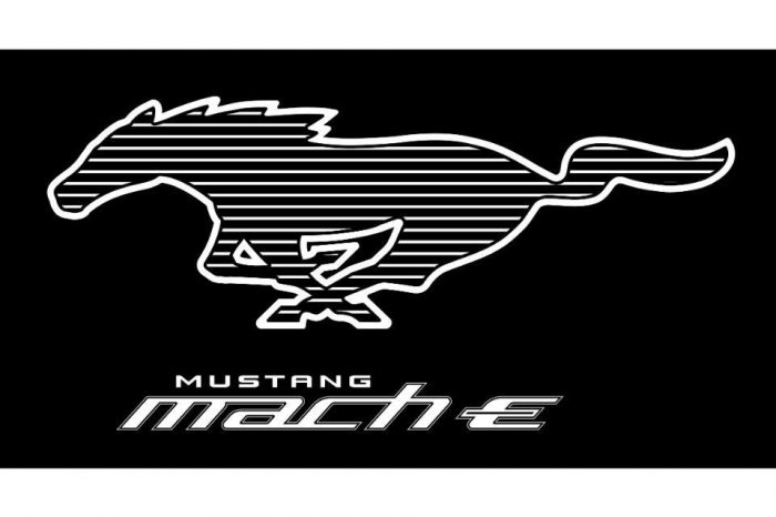 Ford Mustang Mach-E is the newest member of the Mustang Family: online pre-order starting November 18